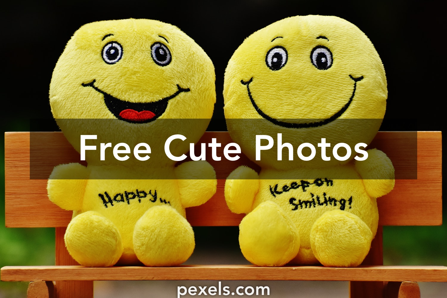 Cute Pictures 23