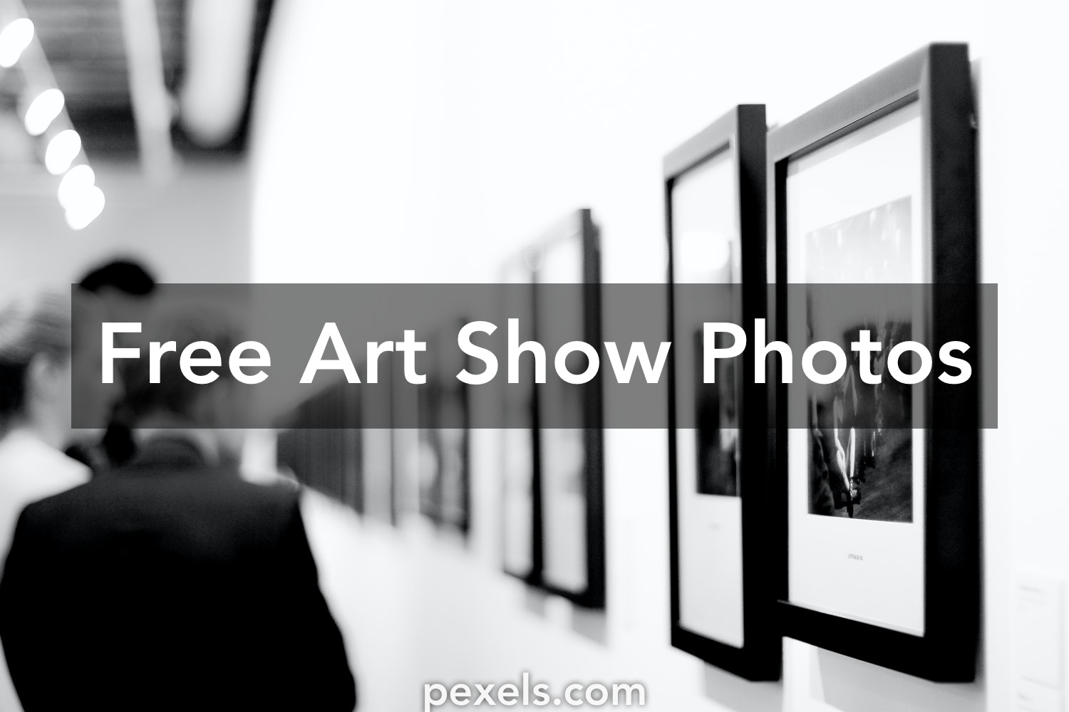 Free stock photos of art show pexels for Free craft show listings