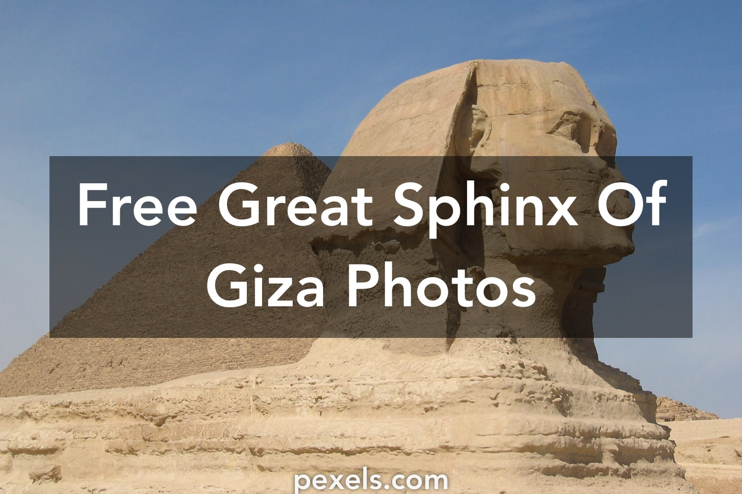 free sphinx of giza - photo #22