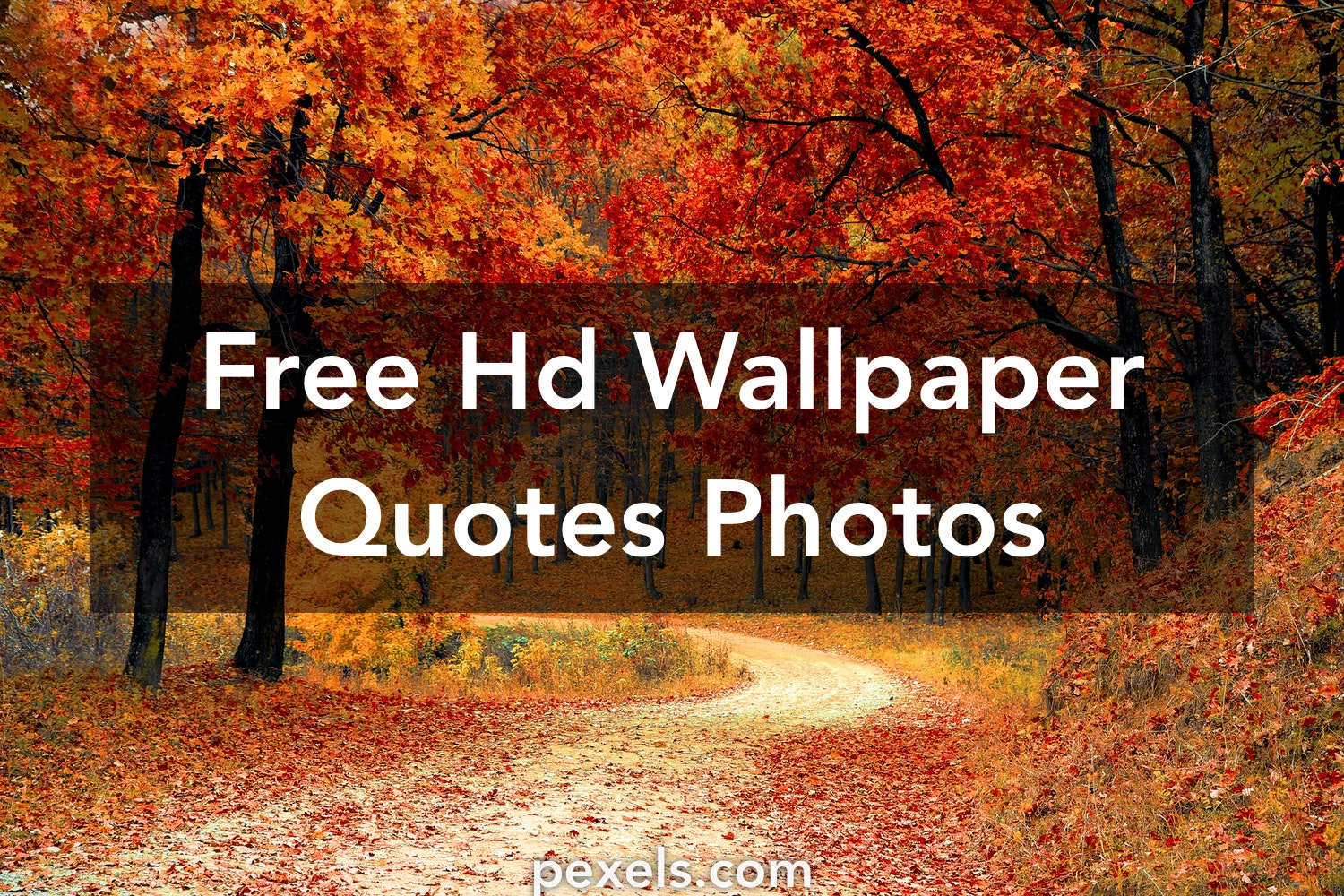 Free Stock Photos Of Hd Wallpaper Quotes Pexels