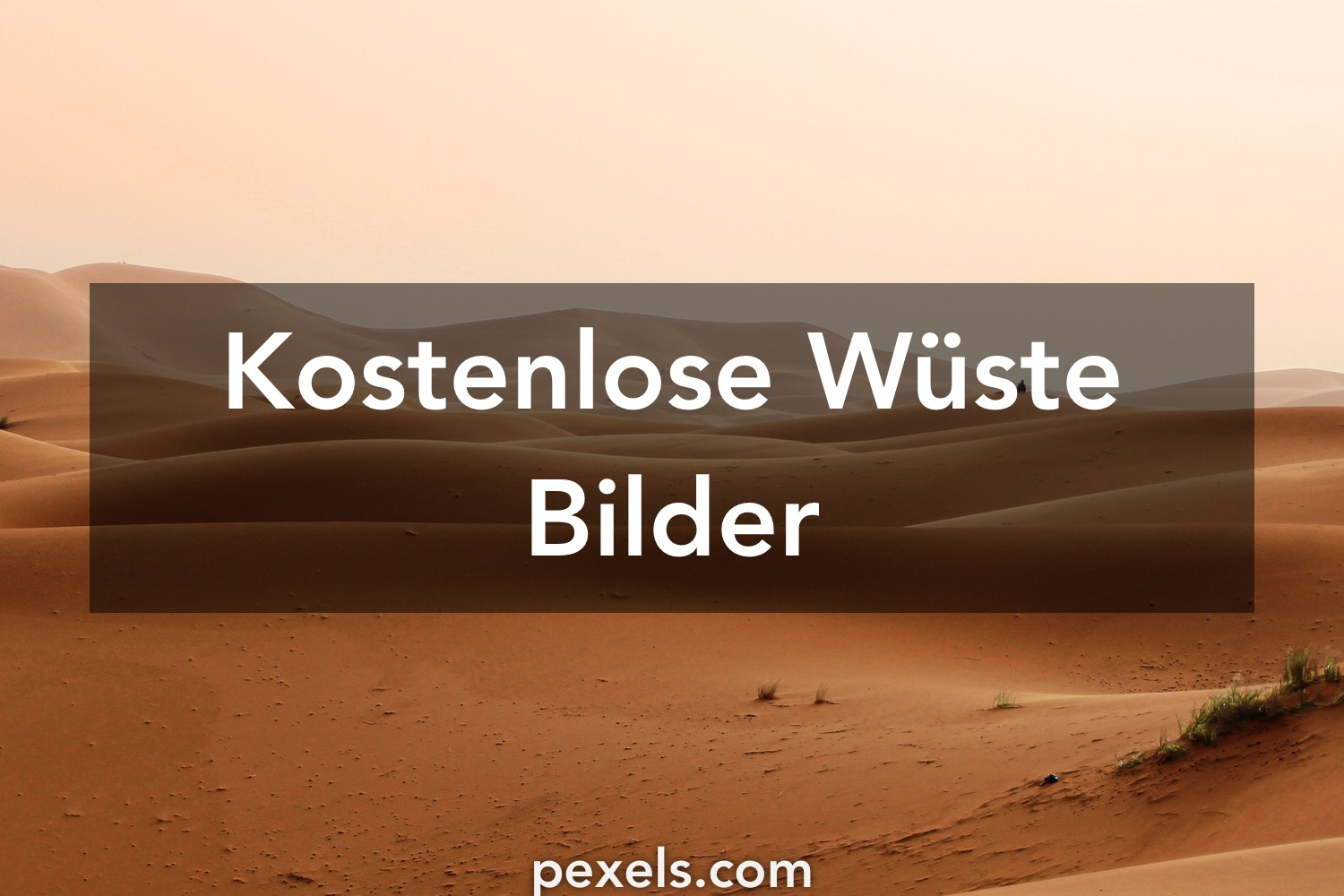 kostenlose stock fotos - photo #19