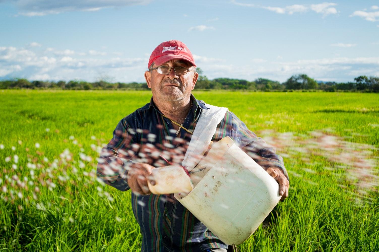 Free Stock Photos Of Farmer 183 Pexels